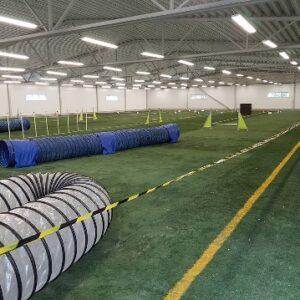 Träning Allmän i Hallen enstaka gång för medlemmar i Värnamo Brukshundklubb