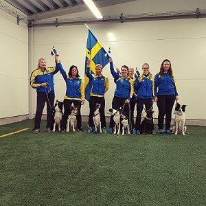 Tävlings kurs med Monika Henriksson